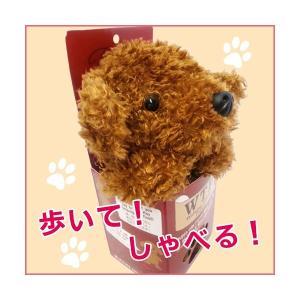 ウォーキングトーキングパピー トイプードル (ぬいぐるみ 犬 動く 話す かわいい クリスマスプレゼント)|y-wakka