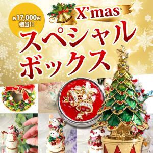 クリスマススペシャルBOXピィアースのクリスマスモチーフアイテムが5点入った超お買い得福袋|ya-piearth