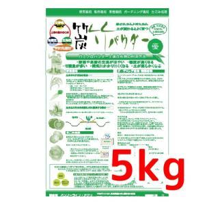 竹パウダー 農業用土壌改良材)5kg×1袋 園芸 田植え 土壌菌  乳酸菌 バンブーライフアグリ yabulovewalker