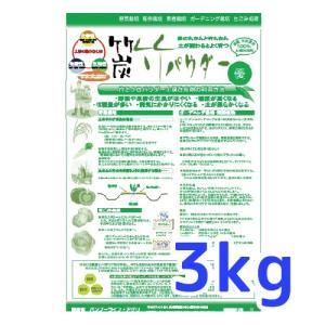 竹パウダー(農業用土壌改良材) 3kg 父の日 ギフト yabulovewalker