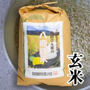 【減農薬・化学肥料不使用】てらださん家の八鹿豚米(ようかぶたまい) 15kg 玄米 冷めてももっちり甘くておいしい養父市産のお米 父の日 ギフト yabulovewalker