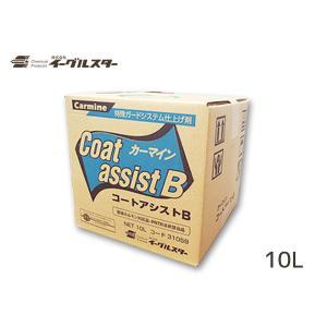 イーグルスター カーマイン コートアシストB 10L BinB 洗車機用 クリーナー ビユーテー 対応 ファイナルベース FB 31059|yabumoto