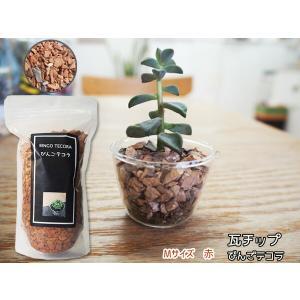 瓦チップ びんご テコラ Mサイズ 赤 600g 観葉植物 プランター カバー材 多肉植物 エアプランツ|yabumoto