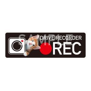 〈猫〉ドライブレコーダー搭載ステッカー★撮影中 危険運転撃退 ステッカー シール 車 3000円以上送料無料|yadotoneko