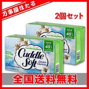 2個セット カドルソフト 柔軟剤シート フレッシュモーニングブリーズ 100枚入り SUN Cuddle Soft yagihotaru