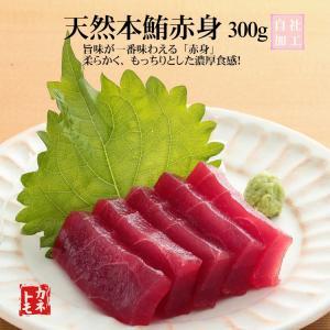 天然本鮪赤身刺身用(本マグロ赤身)|yaizu-kanetomo