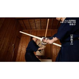 [DVD]甲野善紀 技と術理2015―重心側から動く|yakan-hiko|02