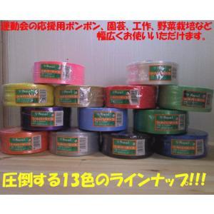 ボンボン作り・園芸など ローヤル化成 シルバーテープ PEテープ レコード巻 平巻50mmx500m(5cm幅/カラーテープ 荷紐 梱包用ひも ロープ・13色)|yakanya