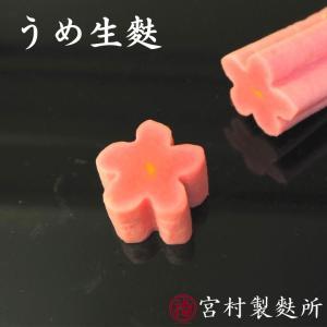 うめ生麩 明治35年 伝統の技 こだわりの味 |yakifu