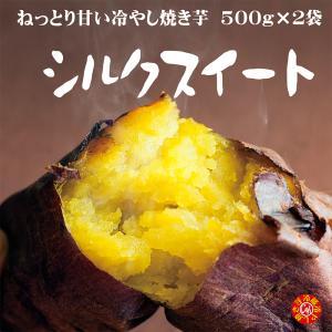 焼き芋 シルクスイート 冷蔵 冷やし焼き芋 ひえひえ君 1.5kg 送料無料 yakiimomarujun