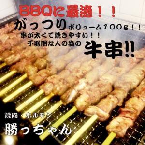 焼きやすい牛串5本セット 1本100g ホルモンのお取り寄せ・通販|yakiniku-kacchan