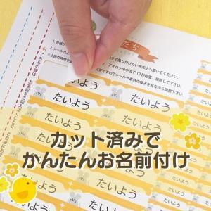 布用 137枚 アイロンシール お名前シール|yakudachi|04