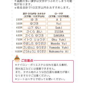 フロッキーネーム 大中小タイプ お名前 シール|yakudachi|08