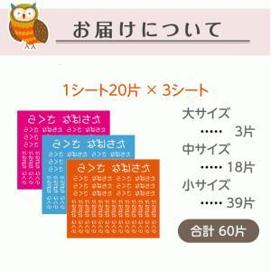フロッキーネーム 大中小タイプ お名前 シール|yakudachi|09