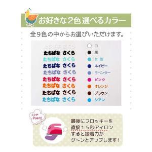 フロッキーネーム 大中小タイプ 38個|yakudachi|06