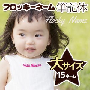 フロッキーネーム 筆記体 特大 15枚|yakudachi