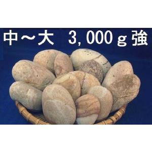 【薬石苑】姫川薬石  中〜大【3,000g】セット|yakusekien