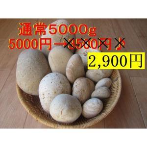 【薬石苑】姫川薬石  お買い得【5,000g】セット|yakusekien