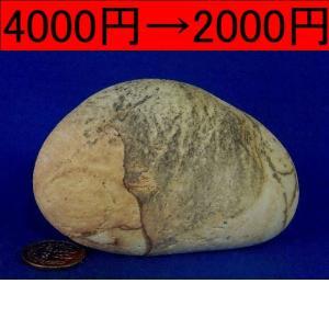 【薬石苑】姫川薬石 特選模様 しのぶ石 414g|yakusekien