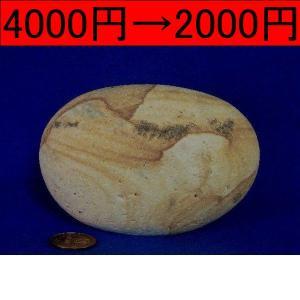【薬石苑】姫川薬石 盆石 水石 天然石絵 しのぶ 松茸風 550g|yakusekien
