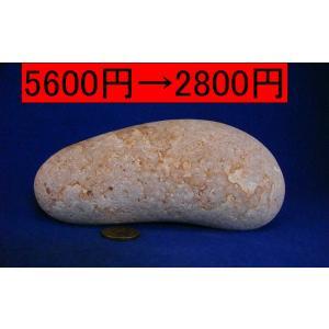 半額♪♪【薬石苑】姫川薬石 虎模様 盆石 水石 長形 852g|yakusekien