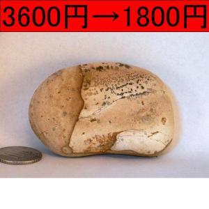 【薬石苑】姫川薬石 盆石 水石 超特選 忍石 天然石絵 125g|yakusekien