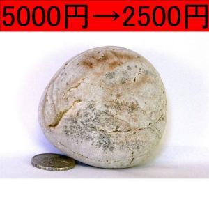 【薬石苑】姫川薬石 盆石 水石 超特選 忍石 天然石絵 234g|yakusekien
