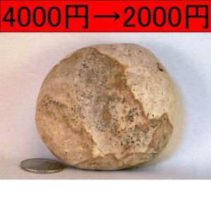 【薬石苑】姫川薬石 盆石 水石 超特選 忍石 天然石絵 265g|yakusekien