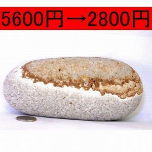 半額♪♪【薬石苑】姫川薬石 虎模様 盆石 水石 ツボ押し 972g   |yakusekien
