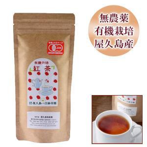 屋久島紅茶(リーフティー)  / 無農薬 / 有機栽培 / 産地直送|yakushimashop