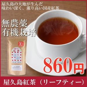 屋久島紅茶リーフティー  無農薬 有機栽培 産地直送 [M便 1/2]