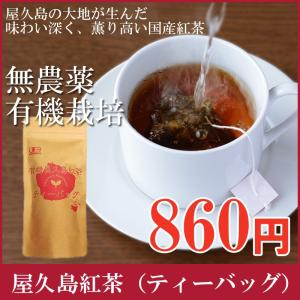 屋久島紅茶(ティーバッグ)  無農薬 有機栽培 産地直送