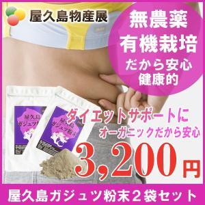 屋久島紫ウコン(ガジュツ)粉末(100g)2袋セット / 無農薬 / 有機栽培 / 産地直送|yakushimashop