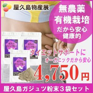 屋久島紫ウコン(ガジュツ)粉末(100g)3袋セット / 無農薬 / 有機栽培 / 産地直送|yakushimashop