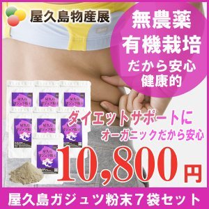 屋久島紫ウコン(ガジュツ)粉末(100g)7袋セット / 無農薬 / 有機栽培 / 産地直送|yakushimashop