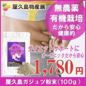 屋久島紫ウコン(ガジュツ)粉末(100g) / 無農薬 / 有機栽培 / 産地直送|yakushimashop
