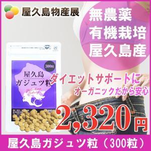 屋久島紫ウコン(ガジュツ)粒(300粒) / 無農薬 / 有機栽培 / 産地直送|yakushimashop