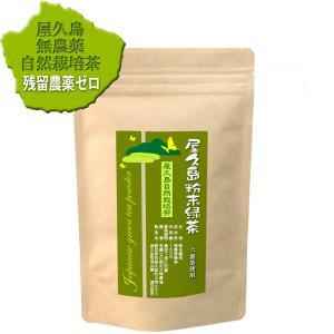 私たちが作った無農薬屋久島粉末緑茶です/自然栽培二番茶/160g/#元気いただきますプロジェクト(茶...