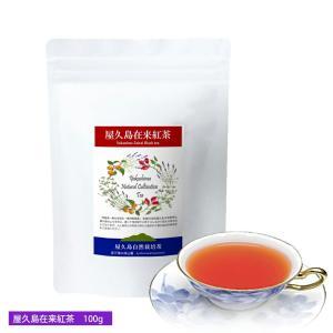 私たちが作った屋久島在来紅茶/茶葉100g