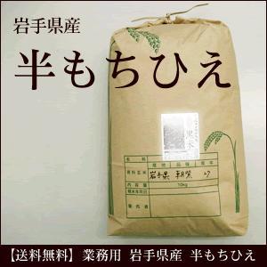 業務用 半もちひえ 岩手県産 20kg 雑穀