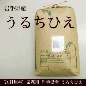 業務用 うるちひえ 岩手県産 10kg 雑穀