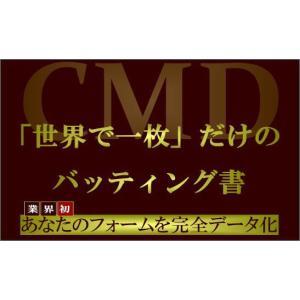 若月大のCMDバッティング指導|yakyu-store