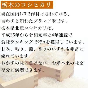 お米 750g(5合) お試し 栃木県 日光産 白米 一等米 コシヒカリ 平成29年産 送料無料 yama-kome 02