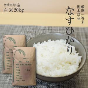 お米 20kg 栃木県 白米 一等米 なすひかり 平成29年...