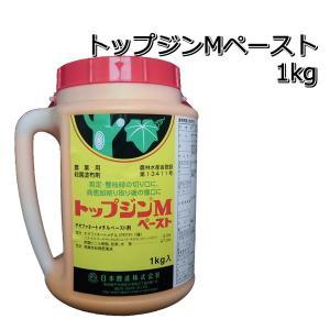 殺菌剤 トップジンMペースト1kg