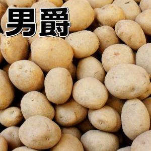 種ジャガイモ 男爵1kg 2月中旬頃の発送となります。...