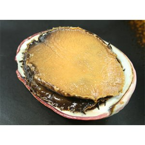あわびの煮貝(磯煮)1個(1個約110g、あわび、肝、殻、煮汁の重さ)ギフト木箱入※従来の和かごから...