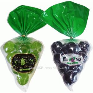 玉ゼリー食べ比べ2個セット(巨峰玉ゼリー1袋&シャインマスカット玉ゼリー1袋)送料無料 ひとくち玉ゼリー 玉ゼリー つまようじ 一口玉ゼリー yama