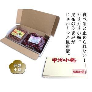 「信玄小梅ぼし」昆布漬と「カリカリ小梅」セット 合計1kg【直送品H】|yama