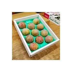 【ソルダム】2kg箱(実重量約1.6kg)7月下旬〜8月初旬発送 南アルプス市山の果樹園産|yama
